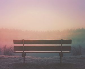 An empty park bench at dusk
