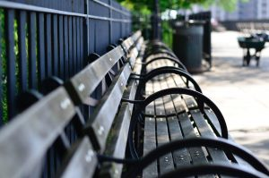 An empty park bench in the summer