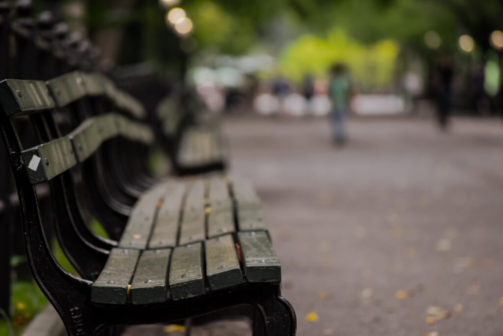 A park bench in the fall