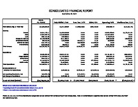 2) Consolidated Financial Report – Oct 2018