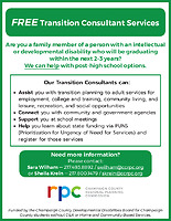 Transition Consultant Services