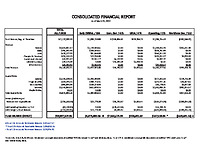 02) Consolidated Report