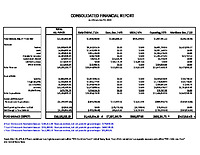 Consolidated Financial Report 11.20